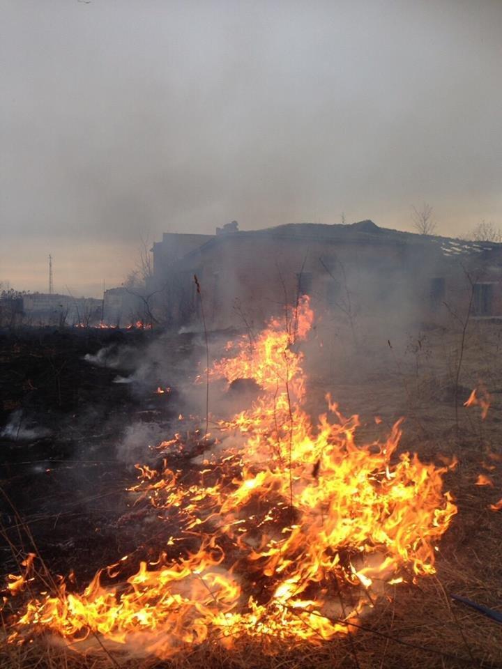 На Тернопільщині через підпал трави ледь не згоріла недобудована лікарня (Фото), фото-3