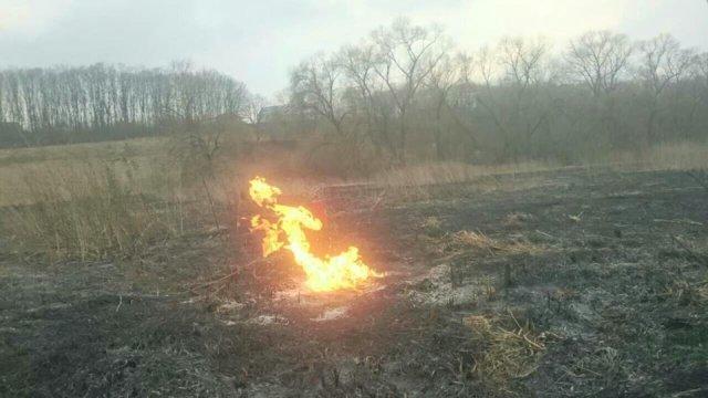 Спалювання сухої трави ледь не призвело до трагедії: поблизу Тернополя виявили розгерметизацію газопроводу (ФОТО), фото-1