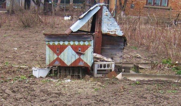 Мешканець Тернопільщини розповів секрети свого 99-ліття (ФОТО), фото-7