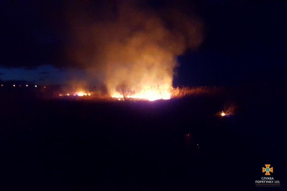 """Вогонь не могли """"збити"""" 3 години: тернопільські пожежники прокоментували масштабний підпал очерету в Білій (Фото), фото-2"""