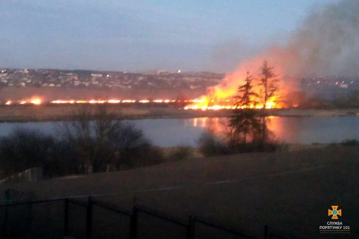 """Вогонь не могли """"збити"""" 3 години: тернопільські пожежники прокоментували масштабний підпал очерету в Білій (Фото), фото-1"""