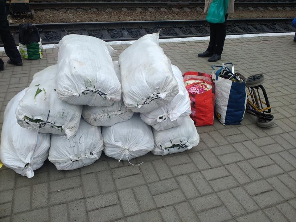 На тернопільському залізничному вокзалі затримали порушників, які сідали на поїзд з мішками червонокнижної рослини (ФОТО), фото-1