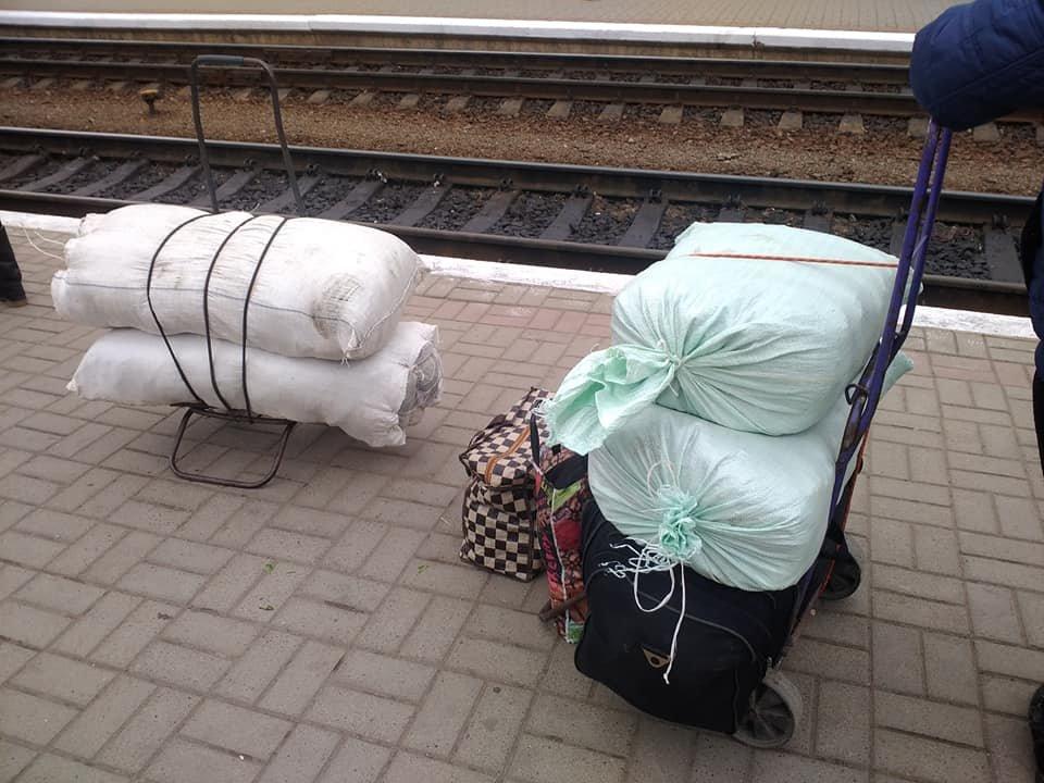 На тернопільському залізничному вокзалі затримали порушників, які сідали на поїзд з мішками червонокнижної рослини (ФОТО), фото-2
