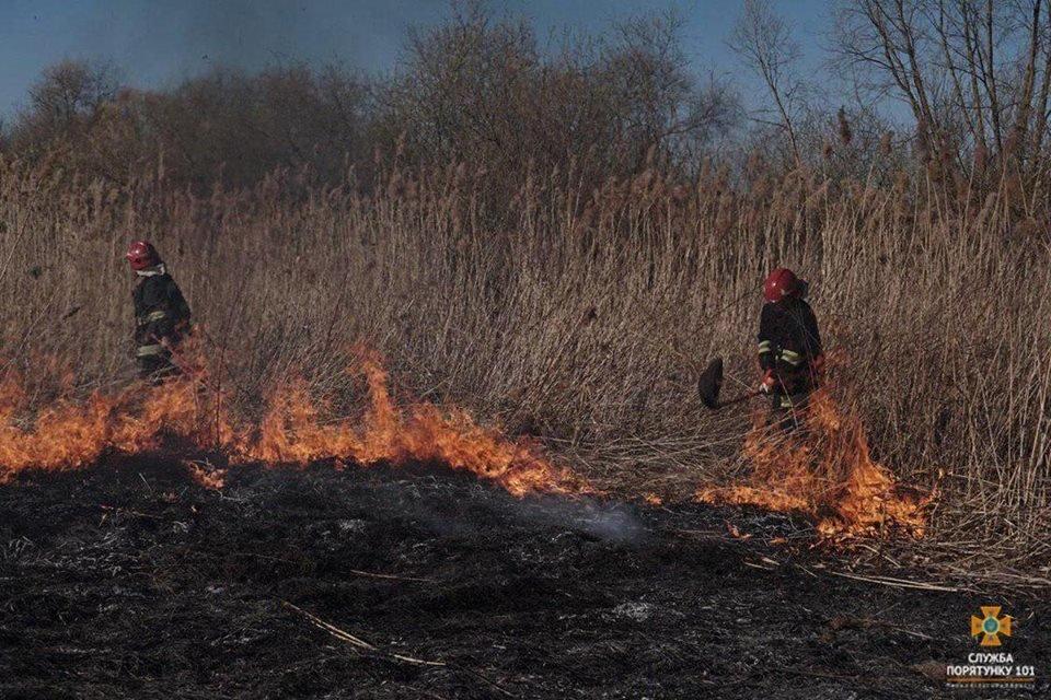 Вогонь був на кілька метрів у висоту: за Тернопільським ставом невідомі випалили 2 га трави (Фото), фото-2