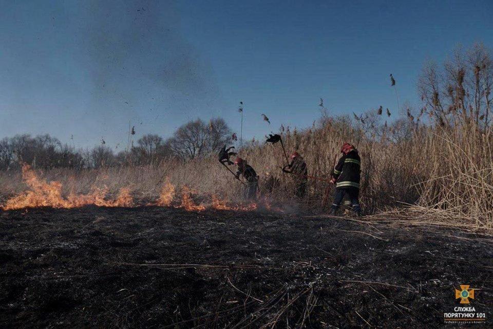 Вогонь був на кілька метрів у висоту: за Тернопільським ставом невідомі випалили 2 га трави (Фото), фото-3