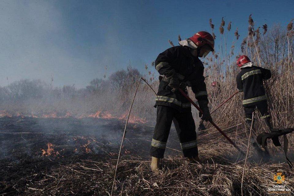 Вогонь був на кілька метрів у висоту: за Тернопільським ставом невідомі випалили 2 га трави (Фото), фото-4