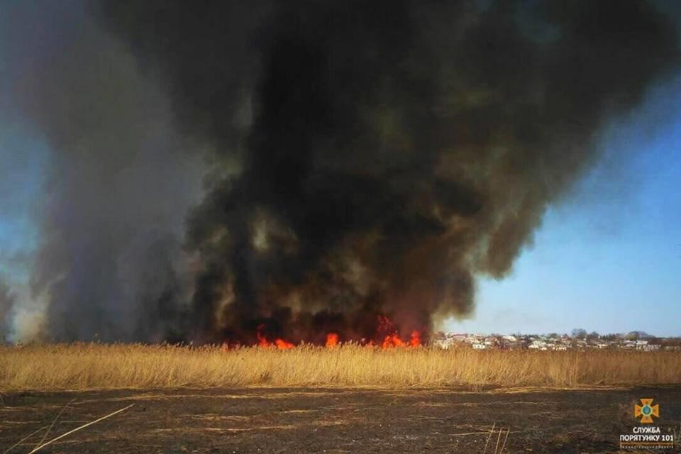 Вогонь був на кілька метрів у висоту: за Тернопільським ставом невідомі випалили 2 га трави (Фото), фото-10