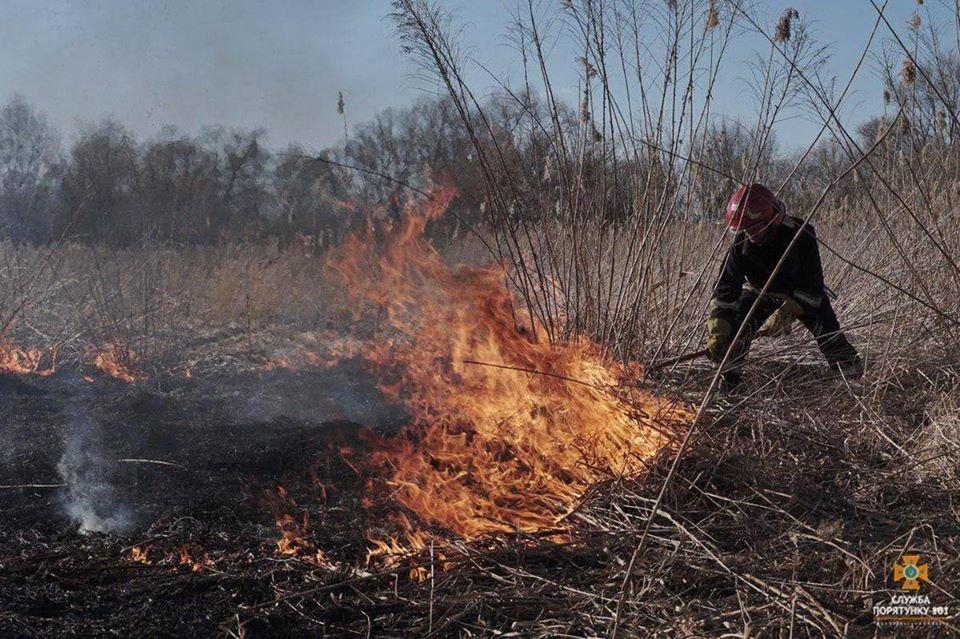 Вогонь був на кілька метрів у висоту: за Тернопільським ставом невідомі випалили 2 га трави (Фото), фото-9