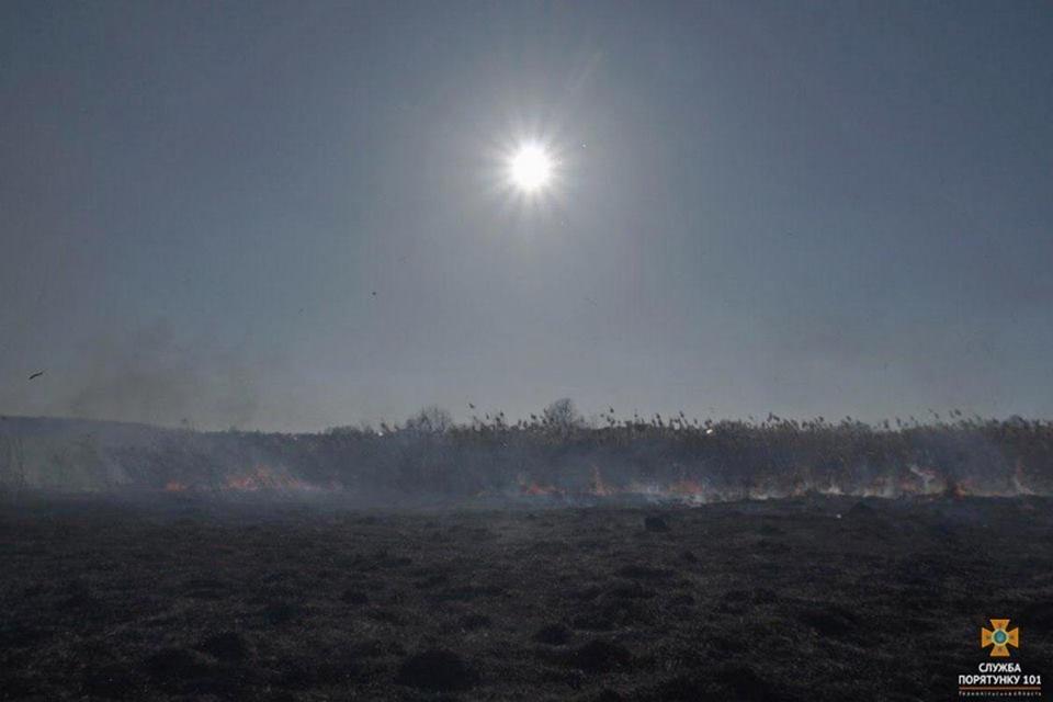 Вогонь був на кілька метрів у висоту: за Тернопільським ставом невідомі випалили 2 га трави (Фото), фото-7