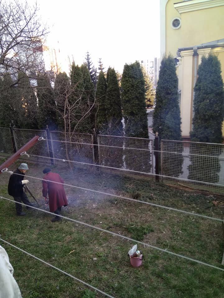 Садять картоплю і розводять вогонь: тернополянка нарікає, що сусіди облаштували під вікнами будинку город (Фото), фото-2
