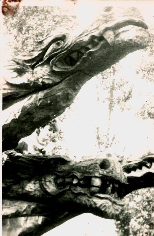 33 богатирі, 7 гномів та Змій-Горинич: яким колись був тернопільський гідропарк (Фото), фото-4
