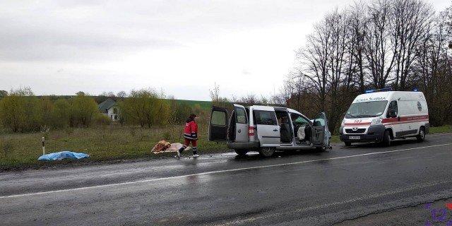 З'явилися подробиці жахливої ДТП за участю автобуса з Тернополя: загинуло троє людей, серед яких дитина (ФОТО), фото-4