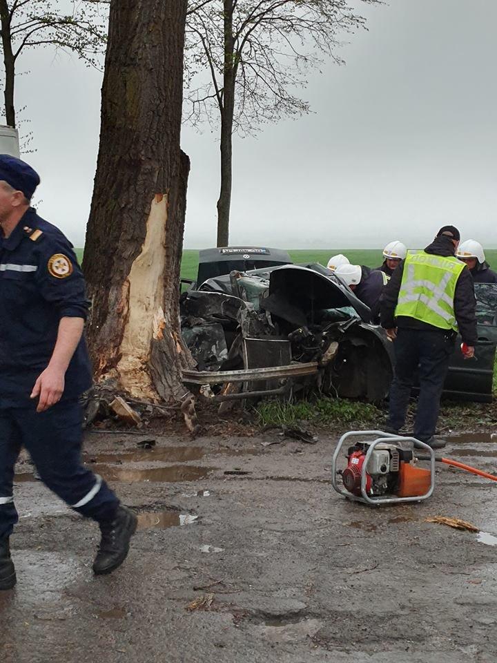 Жахлива аварія у Настасові: авто зім'яло наче консервну банку (фото), фото-2