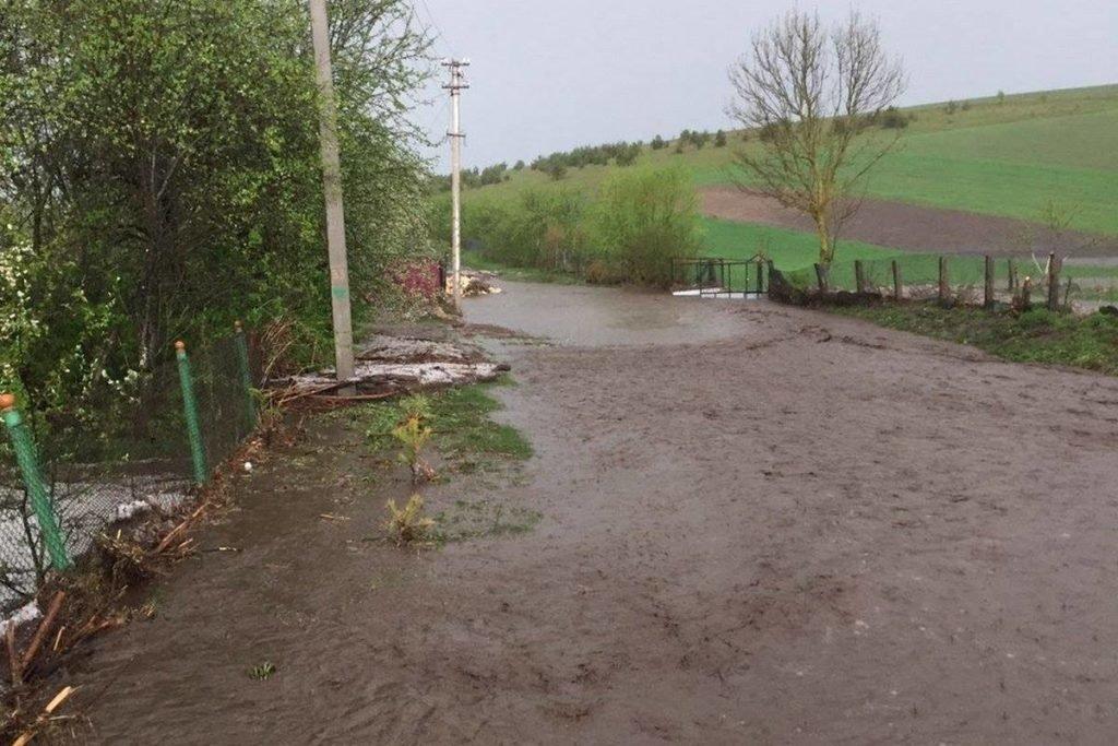 Негода наробила біди на Тернопільщині: затоплені двори, пошкоджений транспорт, евакуація людей (фото, відео), фото-10
