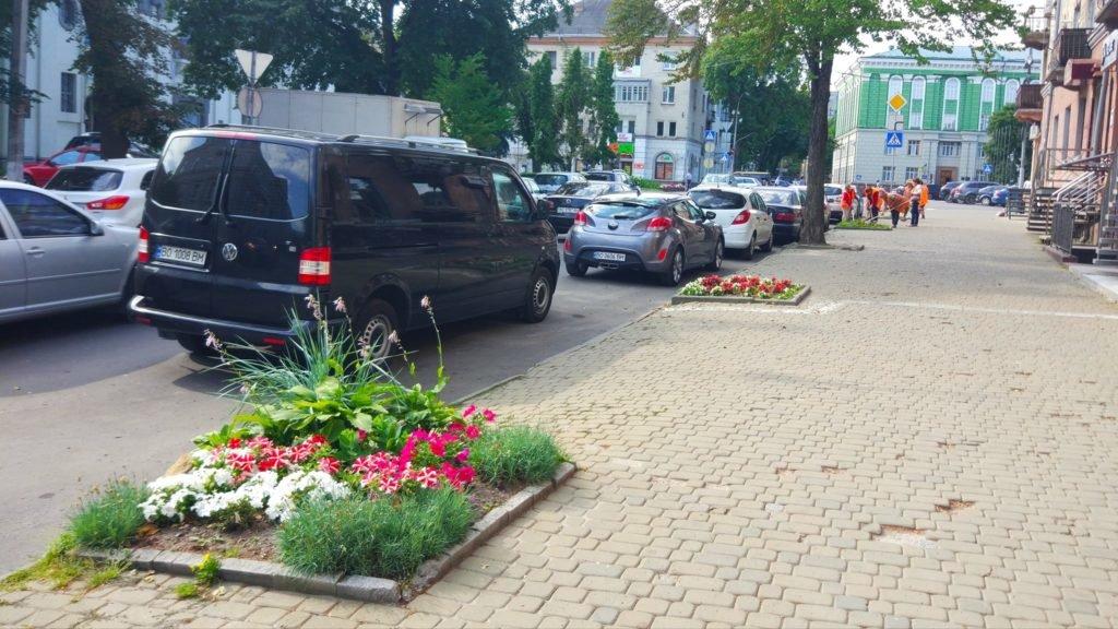У центрі Тернополя замість зрізаних дерев висаджують квіти (ФОТО), фото-3