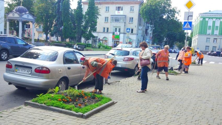 У центрі Тернополя замість зрізаних дерев висаджують квіти (ФОТО), фото-1