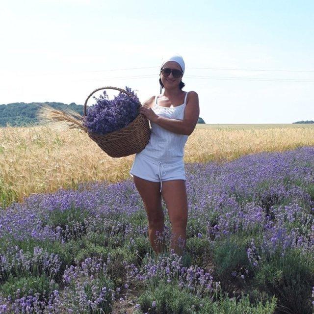 """""""Квітковий рай"""": на Тернопільщині квіткарка самотужки створила лавандову долину (ФОТО), фото-1"""