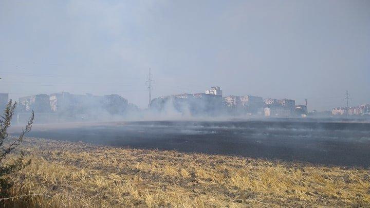 """""""Тернопільщина у вогні"""": через підпал стерні ледь не згоріла автозаправка (ФОТО), фото-2"""