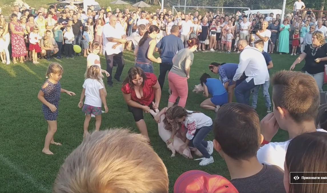 Жорстокі розваги на Волині: під час святкування дня громади люди ледве не роздерли порося (ШОКУЮЧЕ ВІДЕО, 18+), фото-1