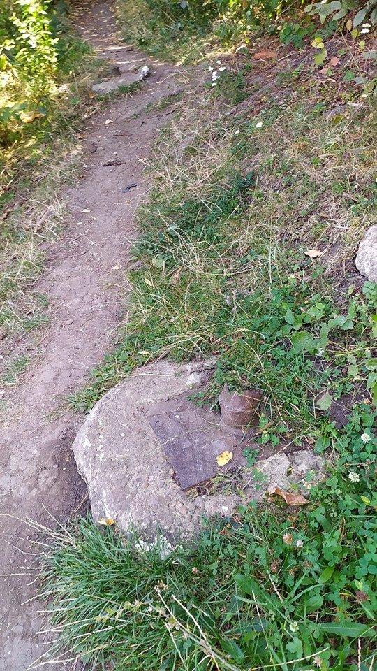 """""""Це справжні джунглі"""" – житель Тернопільщини розповів чому краще оминати тамтешній парк (ФОТОФАКТ), фото-3"""