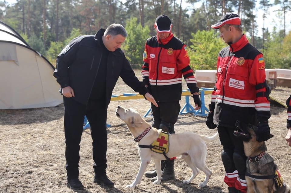 """""""Чотирилапий Бім"""": у Тернополі живе пес, який рятує людей (ФОТО), фото-3"""