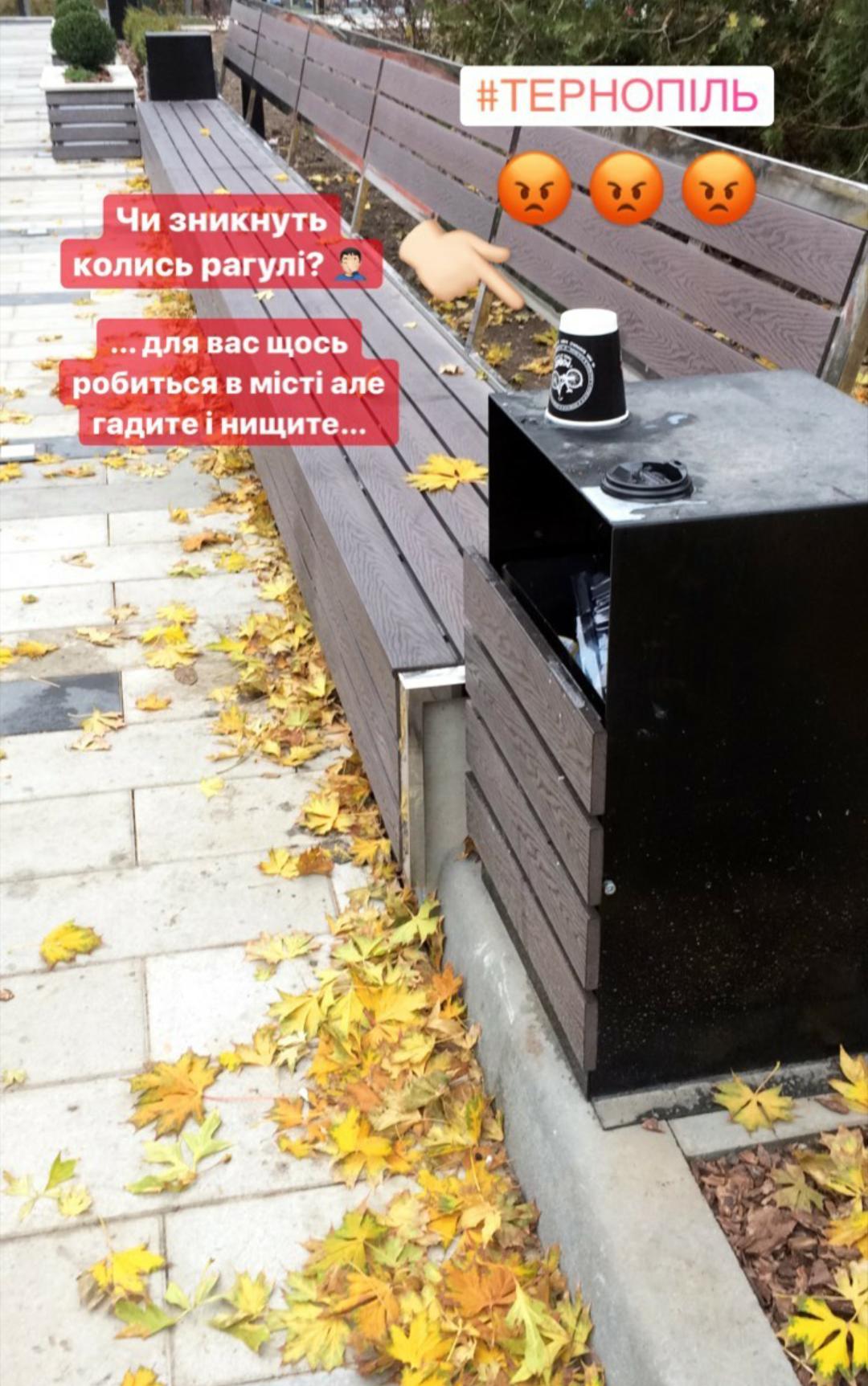"""""""Чи зникнуть колись рагулі?"""": біля тернопільського фонтану """"Кульбаба"""" невідомі влаштували власний """"смітник"""" (ФОТО), фото-1"""