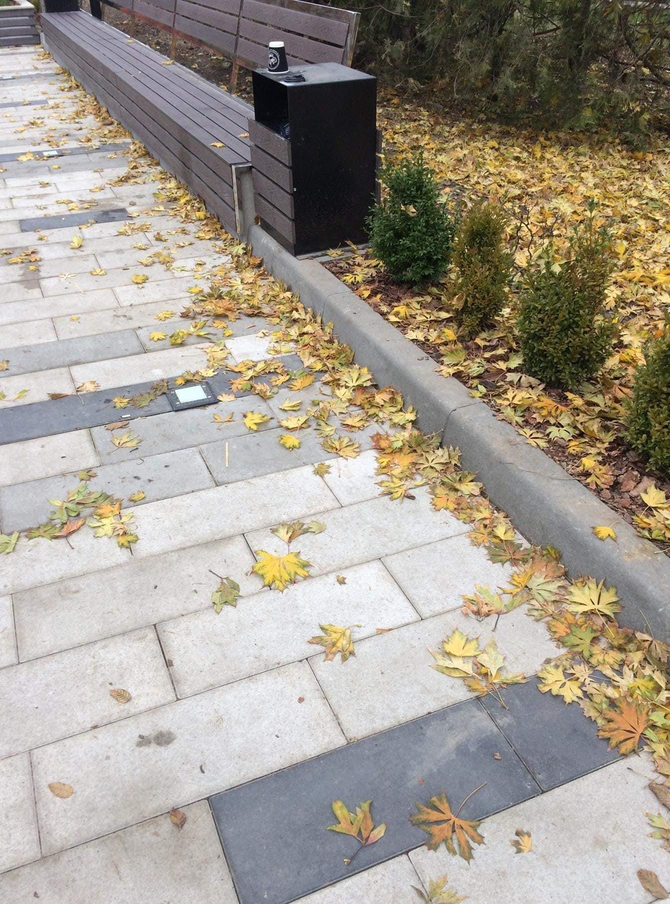 """""""Чи зникнуть колись рагулі?"""": біля тернопільського фонтану """"Кульбаба"""" невідомі влаштували власний """"смітник"""" (ФОТО), фото-3"""