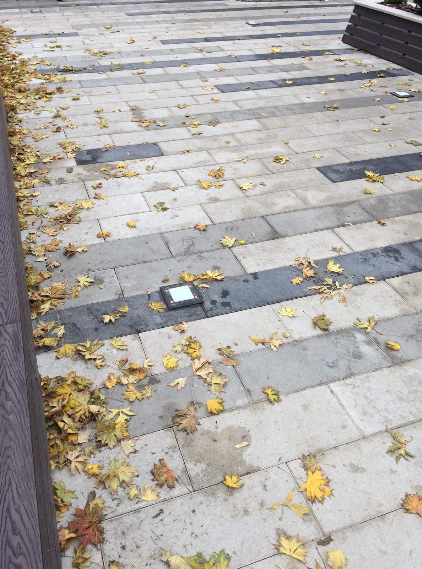 """""""Чи зникнуть колись рагулі?"""": біля тернопільського фонтану """"Кульбаба"""" невідомі влаштували власний """"смітник"""" (ФОТО), фото-4"""