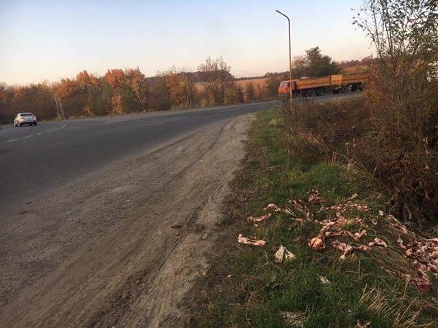 """""""Кості і черепи"""": на Тернопільщині тваринні рештки викидають прямо на узбіччя дороги (ФОТО, 18+), фото-6"""