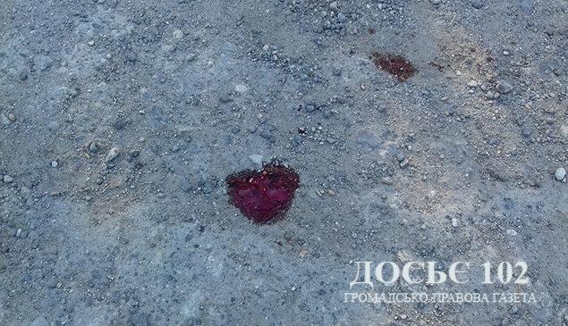 На Тернопільщині дівчинка випала з рейсового автобуса і загинула (ФОТО), фото-3