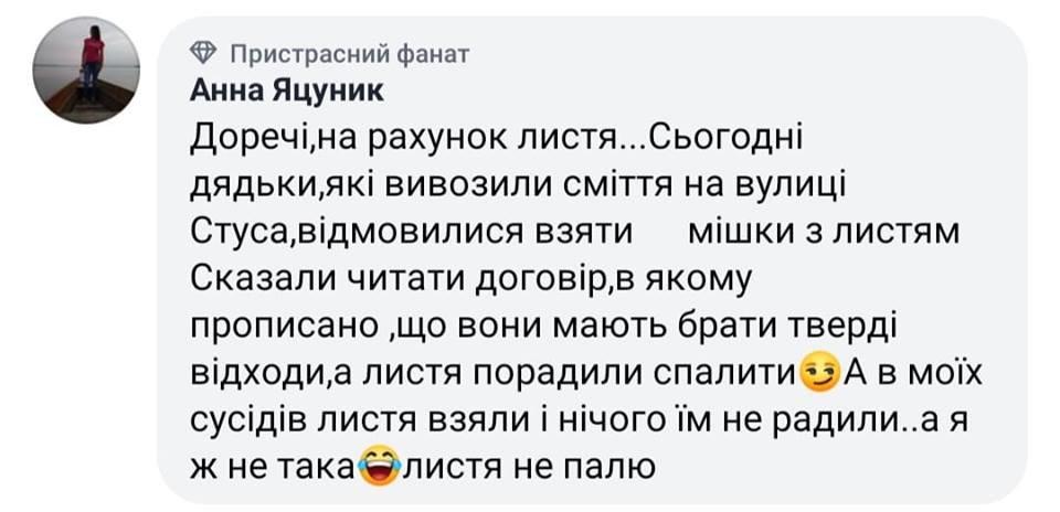 На Тернопільщині комунальники порадили людям... палити сухе листя , фото-1
