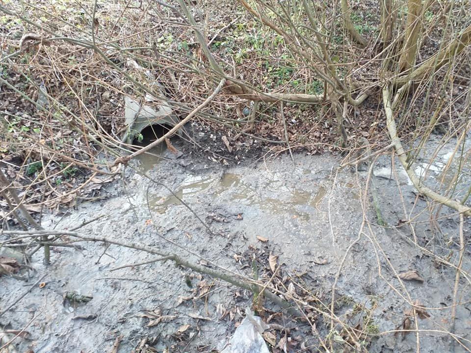 В райцентрі на Тернопільщині під міськрадою поставили унітаз (ФОТОФАКТ), фото-2