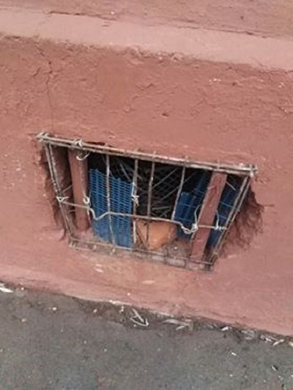 У Тернополі ЖЕКи шкодять безпритульним тваринам (ФОТОФАКТ), фото-2