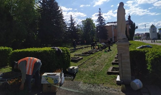У районі на Тернопільщині місцеві жителі крадуть квіти з клумб (ФОТО), фото-1