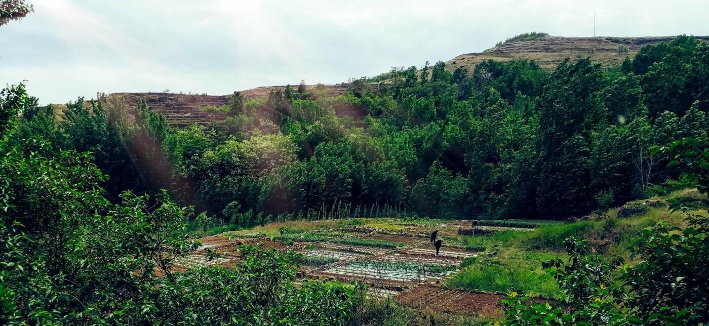 """Секрети східного довголіття чи звичайна """"зона комфорту"""": уродженка Тернопільщини про буденний Китай (ФОТО, ВІДЕО) , фото-23"""