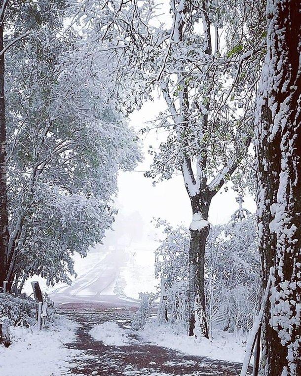 Східну Європу засипало снігом: негода наближається до України (ФОТО), фото-8