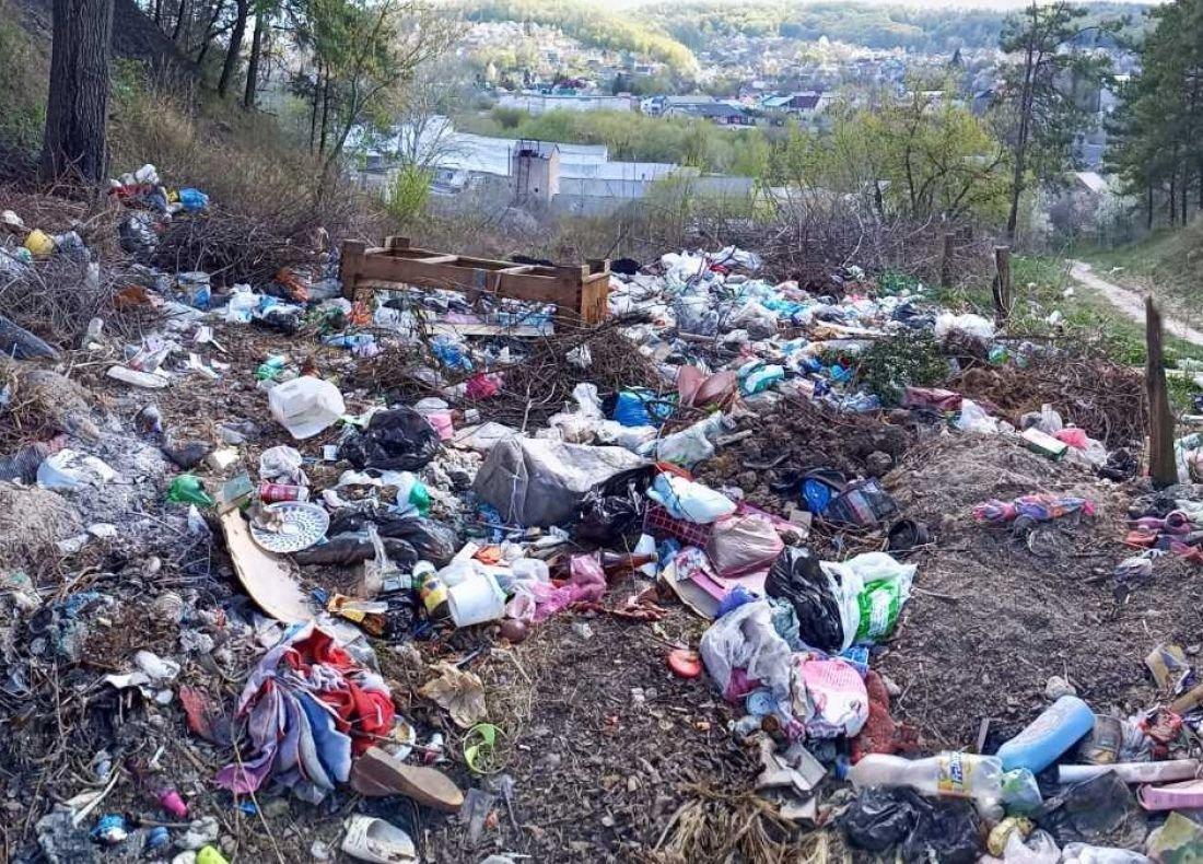 Кременець потопає у смітті: люди влаштували стихійне звалище біля лісу (ФОТО), фото-8
