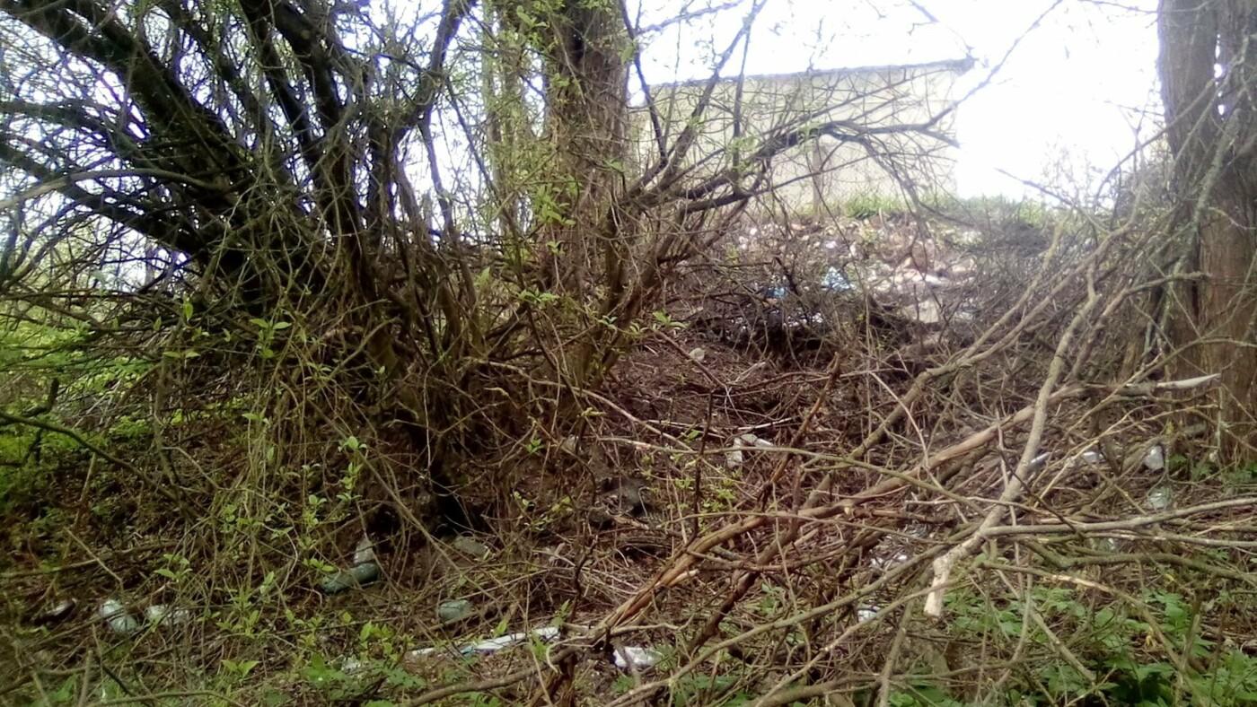 Кременець потопає у смітті: люди влаштували стихійне звалище біля лісу (ФОТО), фото-5