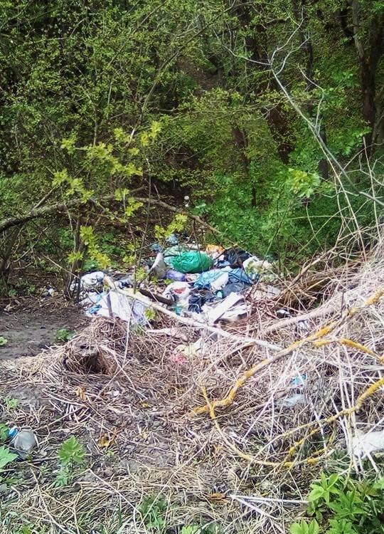Кременець потопає у смітті: люди влаштували стихійне звалище біля лісу (ФОТО), фото-4