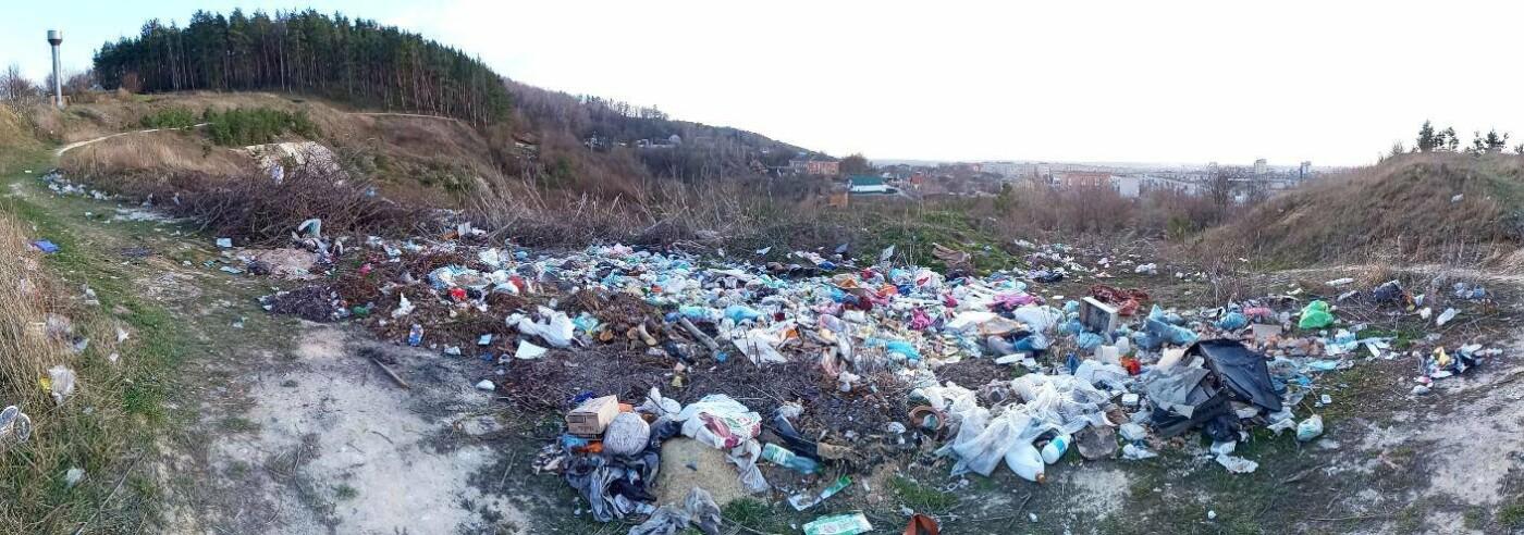 Кременець потопає у смітті: люди влаштували стихійне звалище біля лісу (ФОТО), фото-6