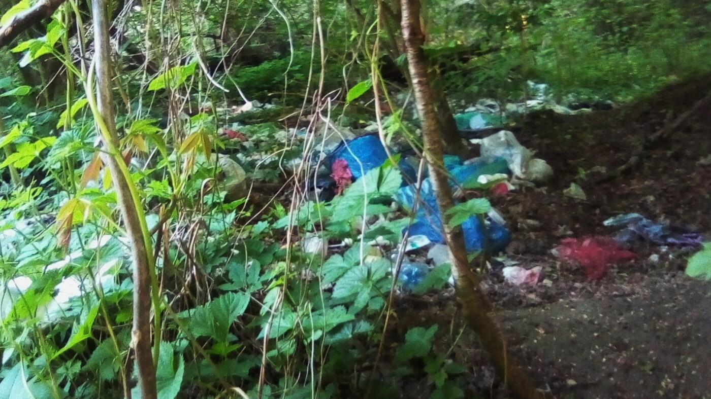 Кременець потопає у смітті: люди влаштували стихійне звалище біля лісу (ФОТО), фото-2