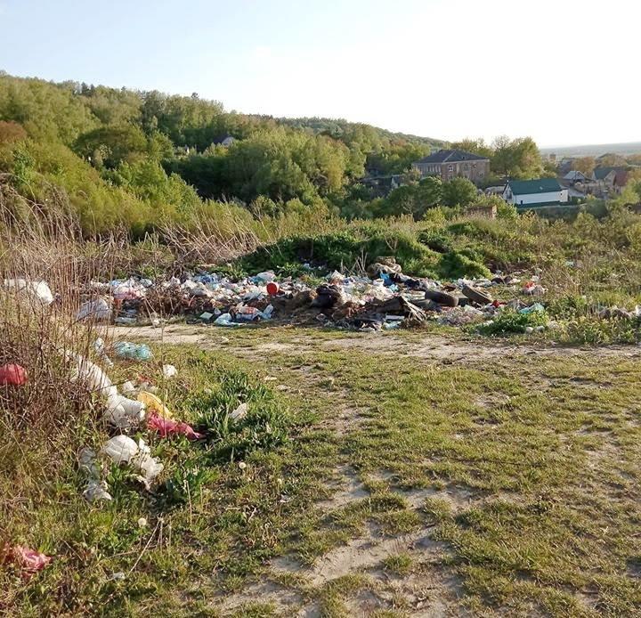 Кременець потопає у смітті: люди влаштували стихійне звалище біля лісу (ФОТО), фото-1