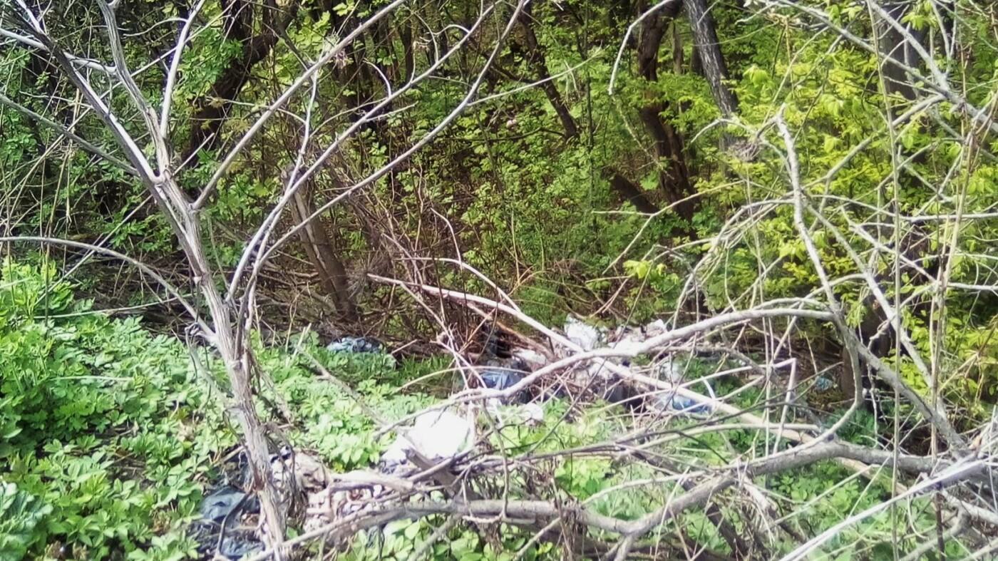 Кременець потопає у смітті: люди влаштували стихійне звалище біля лісу (ФОТО), фото-3