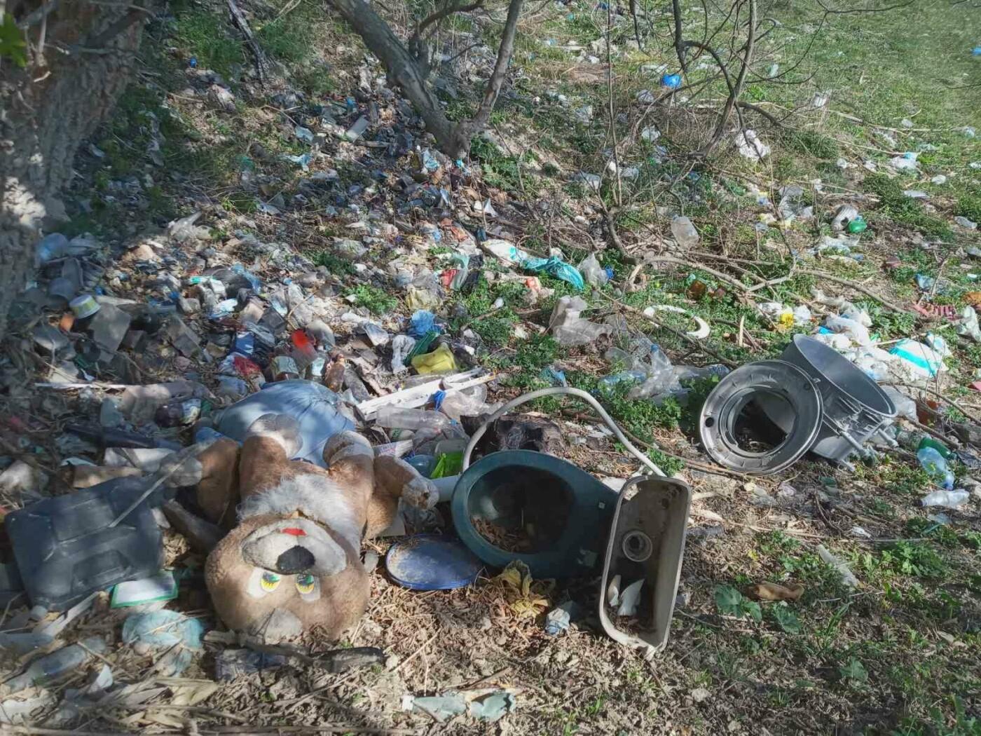 Кременець потопає у смітті: люди влаштували стихійне звалище біля лісу (ФОТО), фото-7