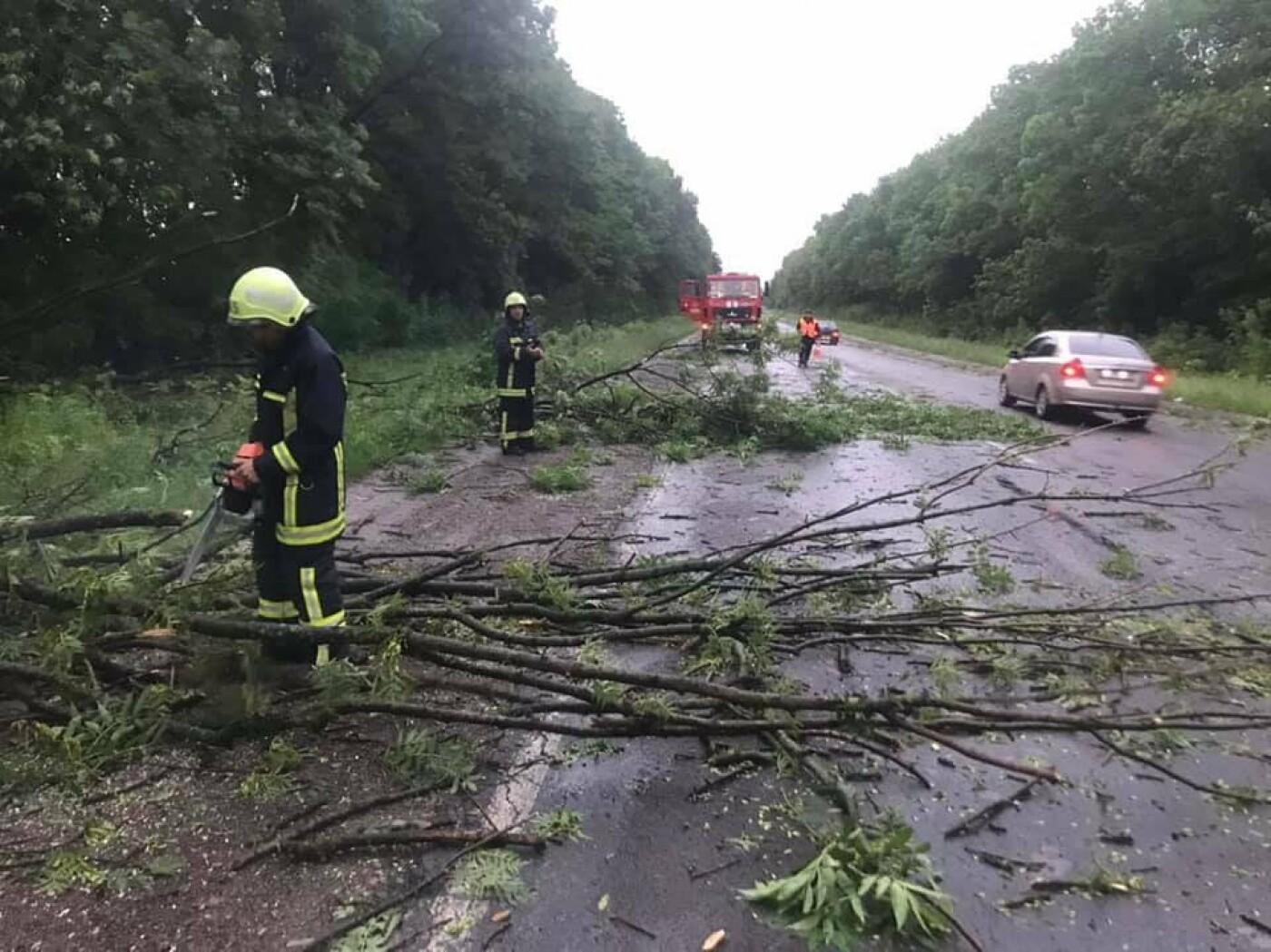 """""""Зривало дахи і валило дерева"""": негода знову спричинила руйнування на Тернопільщині (ВІДЕО), фото-1"""