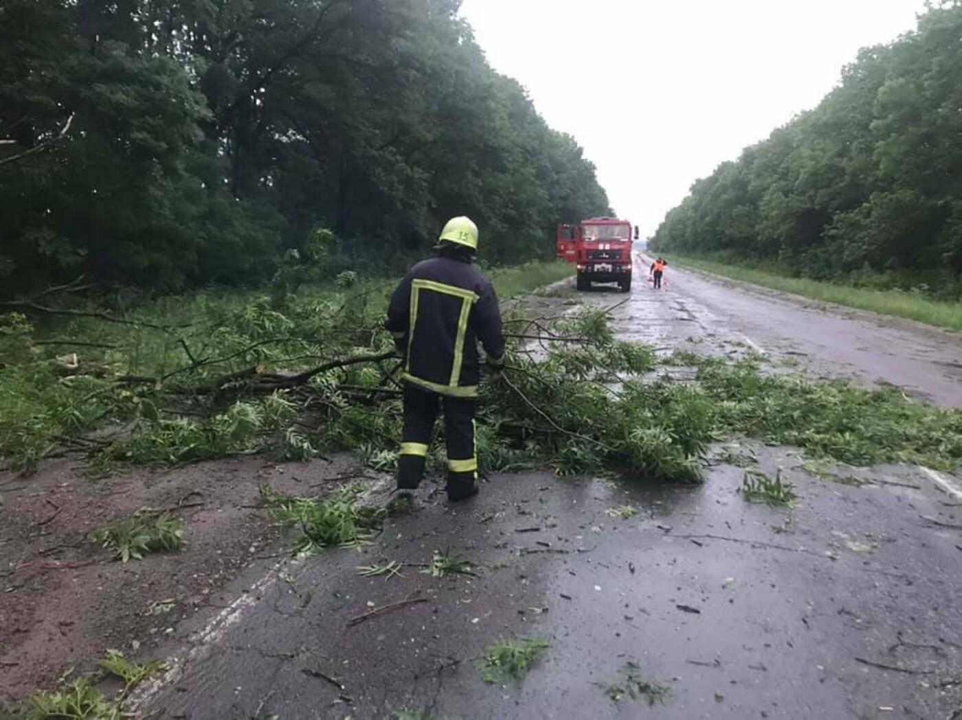 """""""Зривало дахи і валило дерева"""": негода знову спричинила руйнування на Тернопільщині (ВІДЕО), фото-2"""