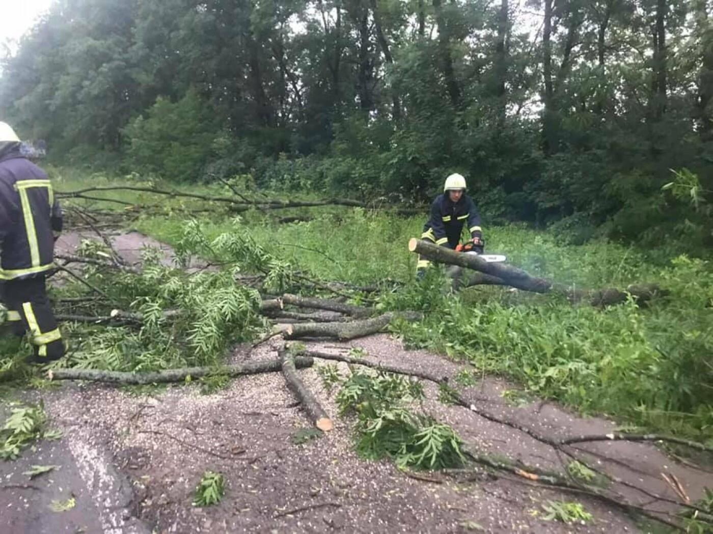 """""""Зривало дахи і валило дерева"""": негода знову спричинила руйнування на Тернопільщині (ВІДЕО), фото-3"""