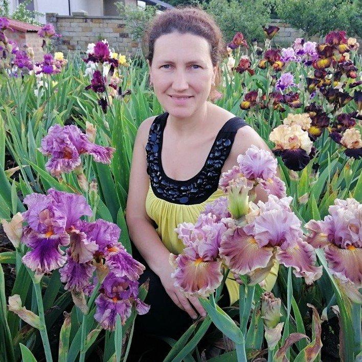 «Не подвір'я, а квітковий рай!»:  кажуть про обійстя Олени Паламар з Тернопільщини (ФОТО), фото-1