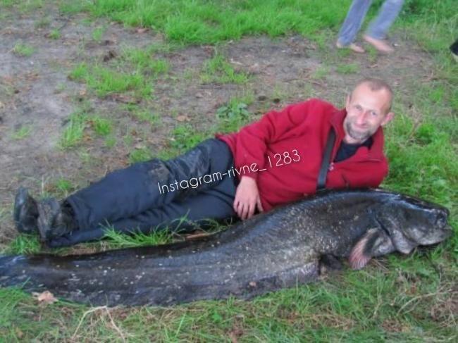 Рибалка спіймав величезного сома, завбільшки з людину (ФОТОФАКТ) , фото-1