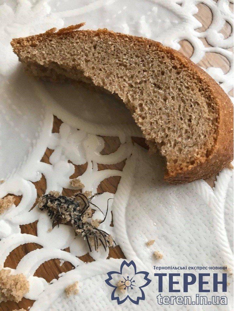 """""""Слід звернути увагу"""": у Тернополі жінка придбала хліб із """"пернатим"""" сюрпризом (ФОТОФАКТ), фото-2"""